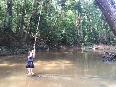 Concours de Tarzan au-dessus de la rivière dans la forêt tropicale du Taman Negara à Merapoh en Malaisie
